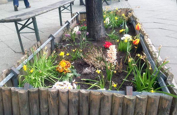 urban gardening i berlin og nye have gadgets til den lille have. Black Bedroom Furniture Sets. Home Design Ideas