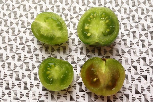 Grønne tomater