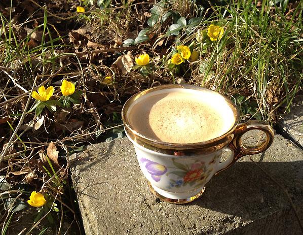 I dag er det forår i den lille have
