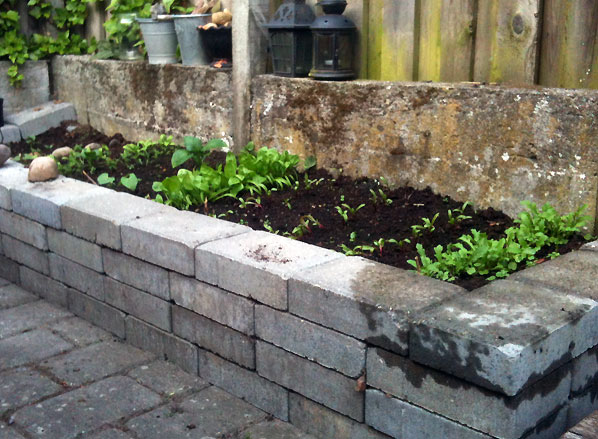 Urtehavebed – At have en lille urtehave